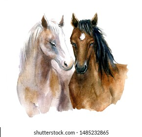 Watercolor lovely horses on the white background. Happy Valentines day!