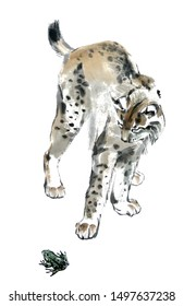 Watercolor lynx and frog. Beautiful hand-drawn work with a wild creature.