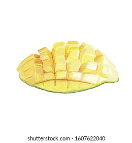 Watercolor mango illustration Hand drawn hand painted watercolor clip art Food illustration for cook book projects, menu or recipe