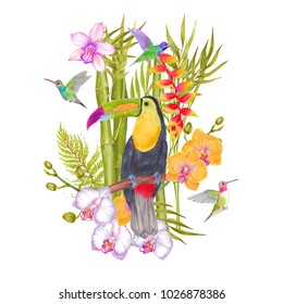 Watercolor marker tropical orchid and banana flowers, bamboo with colibri bird and toucan bird. Colorlful tropic background print isolated on white.