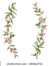 Watercolor Myrtle. Vintage Watercolor Wreath with Green Leaves, Twigs, Berries, Branches of Myrtle. Botanical Natural Watercolor Illustration Isolated on White Background.