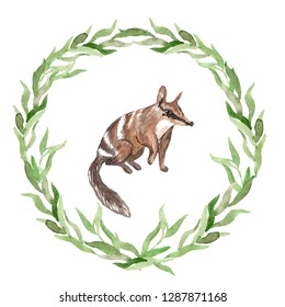 Watercolor native Australian numbat in an eucalyptus wreath. Nursery poster. Concept for children's book  illustration, poster, card, nursery room decor, pattern, scrapbooking or stationery design