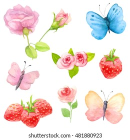 Watercolor nature clipart.  Hand painted. Roses, strawberries, butterflies.