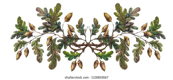 Watercolor oak branch composition with leaves and acorns isolated on white, forest flourish drawing. Rustic floral wedding arrangement, country farmhouse decor. Vintage style botanical illustration.