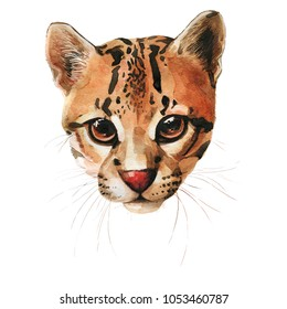 Watercolor ocelot cat head illustration Watercolor close up portrait of popular Bengal cat breed isolated on white background. Short-hair leopard with dotted coat.