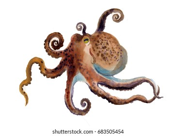 watercolor octopus. octopus silhouette watercolor sketch. Wildlife art illustration. Watercolor graphic for fabric, postcard, greeting card, book, poster, tee-shirt
