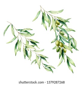 Watercolor olive tree branch set with green olives and leaves. Hand painted floral illustration isolated on white background for design, print, fabric or background