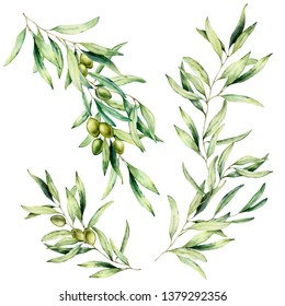 Watercolor olive tree branch set with leaves and green olives. Hand painted floral illustration isolated on white background for design, print, fabric or background