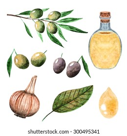 Watercolor olives collection including olive branch, bottle with oil, black olives, oil drop, garlic and bay leaf