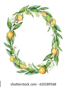 Watercolor oval frame fruit orange branch isolated on white background. Illustration for design wedding invitations, greeting cards, postcards. Spring or summer flowers with space for your text.