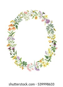 Watercolor oval wreath with meadow plants. Healing Herbs for cards, wedding invitation, posters, save the date or greeting design. Summer flowers with space for your text.