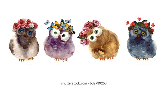 Watercolor owls with butterfly and flower. Isolated illustration for your design