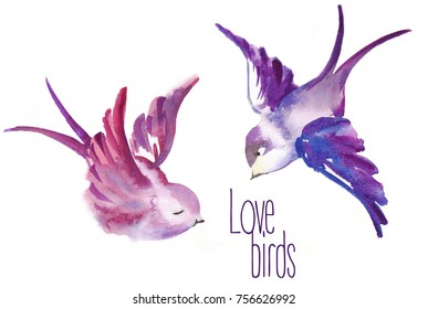 Watercolor painted birds in love. Valentines Day card. Raster illustration on white background.