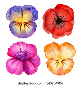 watercolor painted flower design elements isolated on white background