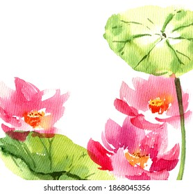 Watercolor painted illustration of water lily lotus in bloom. Pink flowers and big green leaves. Oriental traditional painting in style sumi-e and u-sin.