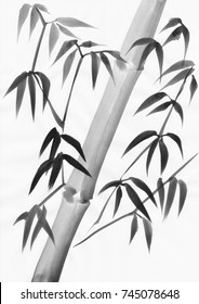 Watercolor painting of bamboo leaves with a slanted stalk. Black gouache on white paper study.