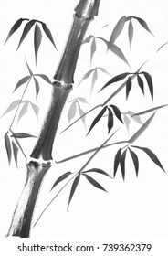 Watercolor painting of a bamboo stalk with leaves. Black gouache on white paper study.