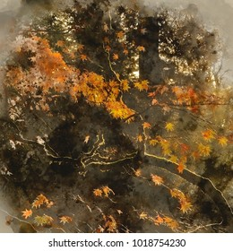 Watercolor painting of Beautiful golden Autumn leaves with bright backlighting from sunrise