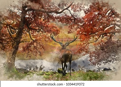Watercolor painting of Beautiful red deer stag looks out across lake towards mountain landscape in Autumn scene