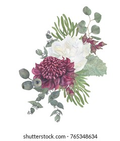 watercolor painting beautiful winter bouquet with  waratah australia and white flower