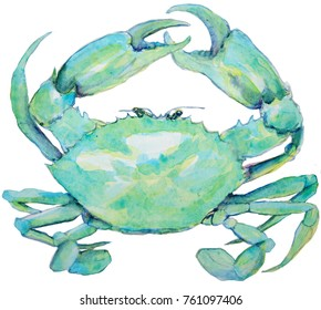 Watercolor painting of blue green crab on white background
