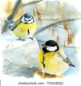Watercolor painting  blue tit and great tit in winter