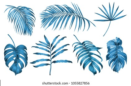 Watercolor painting blue and white set of coconut,palm leaf,tropical leaves isolated on white background.Hand drawn illustration tropical exotic leaf for wallpaper vintage Hawaii jungle style pattern.
