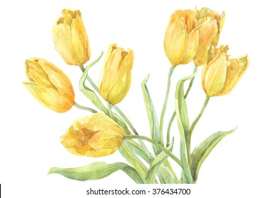 watercolor painting bouquet of spring flowers yellow tulips