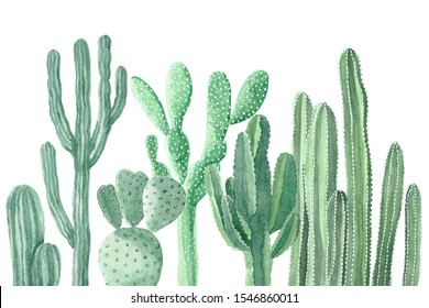 Watercolor Painting of Cactus and Succulents