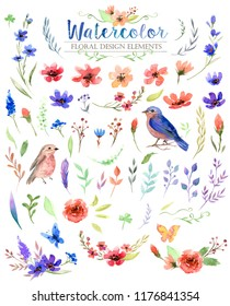 Watercolor painting of colorful flowers, leaves and birds. The art paint on white background