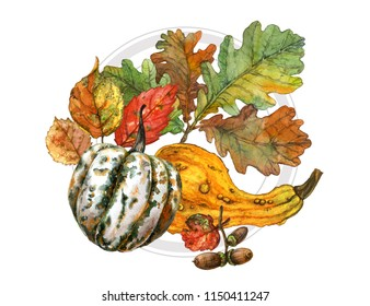 Watercolor painting of decorative pumpkins, branch with acorns, red, yellow and green foliage. Autumn print. Design template