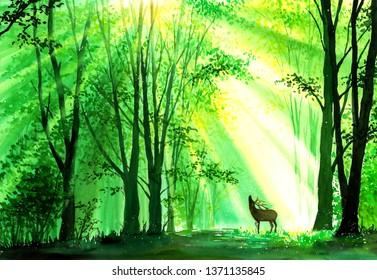 Watercolor Painting - Deer