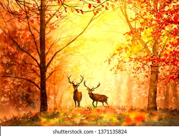 Watercolor Painting - Deer in Autumn forest