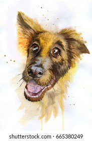 watercolor painting funny dog breed shepherd