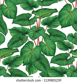 Watercolor painting green leaves,palm leaf seamless pattern on white background.Watercolor hand drawn illustration tropical,aloha exotic leaf for wallpaper textile Hawaii aloha jungle style pattern.