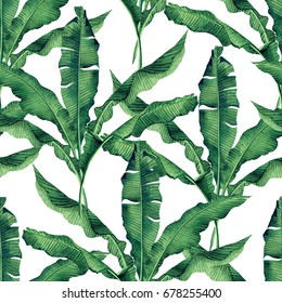 Watercolor painting green,banana leaves seamless pattern on white background.Watercolor hand paint illustration palm,banana leaf,tree tropical exotic leaf for wallpaper vintage Hawaii style pattern.