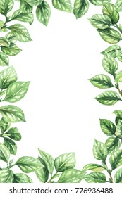 Watercolor painting.  Hand drawn vertical frame made with tree branches  and  green leaves. Floral decorative border.
