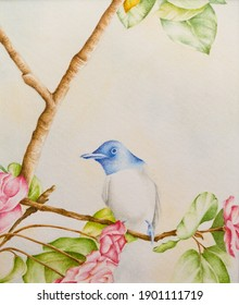 watercolor painting heaven Bird on a tree with pinkish flowers in spring Traditional Persian style