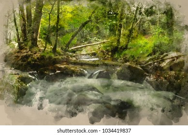 Watercolor painting of Landscape iamge of river flowing through lush green forest in Summer