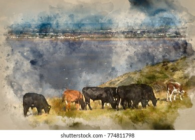 watercolor painting of Landscape image of cows with Weston-Super-Mare in background