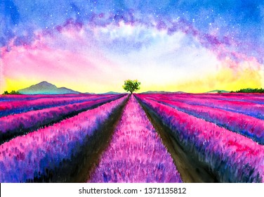Watercolor Painting - Lavender