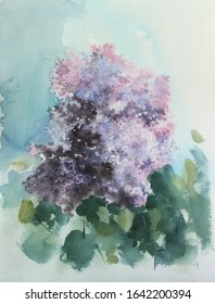 Watercolor painting, lilac, pink flowers and blue sky