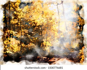 watercolor painting of morning sun shining though a clearing in autumn forest with sunlight shining on bright autumn woodland trees with fallen leaves on the ground