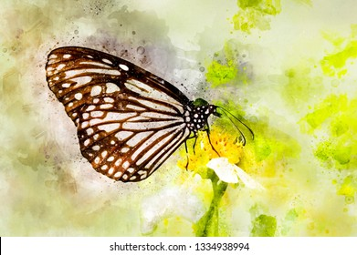 Watercolor painting of natural milkweed butterfly feeding on little flower
