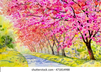 Watercolor painting original landscape flower puple,pink color of wild himalayan cherry in sky and cloud background