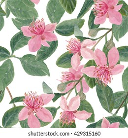 WAtercolor painting semless pattern with Feijoa (Acca sellowiana) branch with flowers.