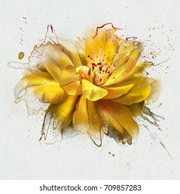 watercolor painting spring flowers, yellow Tulip fully opened. With splashes and drips of paint