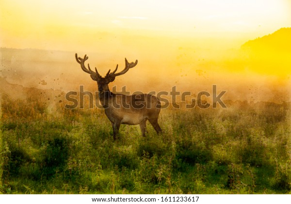 Watercolor painting of a stag deer with antlers standing in scenic nature in foggy morning or evening light