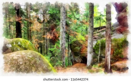 Watercolor painting of the summer sunny forest. Digital structure