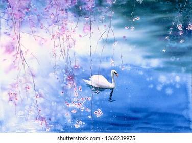 Watercolor Painting - Swan